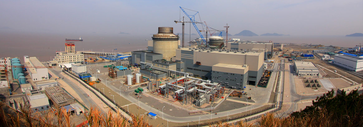 Westinghouse Electric CEO Roderick Expects Ongoing Work In