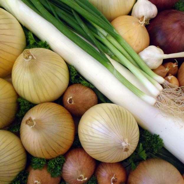 Το σκόρδο, το κρεμμύδι και το πράσο, συνδέεται με μειωμένο κίνδυνο εμφάνισηςκαρκίνου του παχέος εντέρου