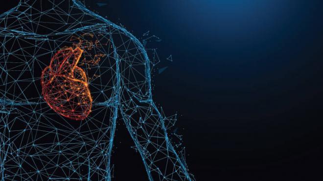 Πώς σχετίζεται το ύψος με την καρδιοπάθεια