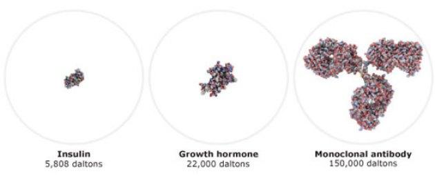 Τα βιολογικά φάρμακαέρχονται σε διάφορες μορφές, όπως τα μονοκλωνικά αντισώματα και oι παράγοντες ανάπτυξης.