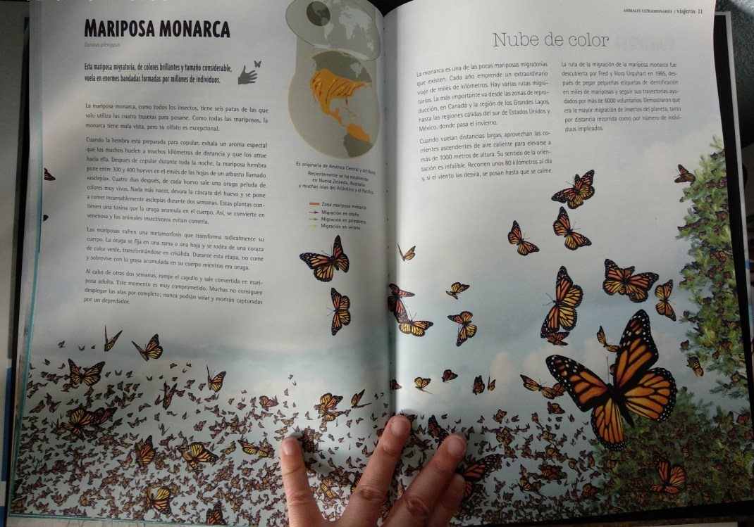 la mariposa monarca en viajeros de la editorial kalandraka
