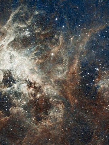la educación cósmica, uno de los regalos de Maria Montessori para la humanidad