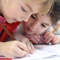 Que son las tendencias humanas en Montessori
