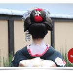 Geisha o maiko por unas horas