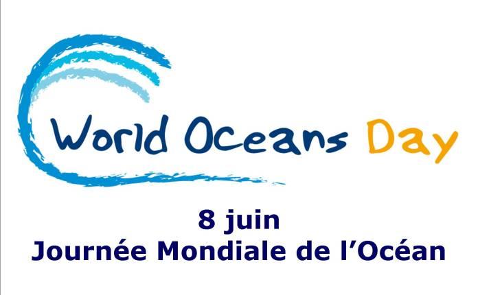 7 choses simples à faire nu lors de la journée mondiale des océans
