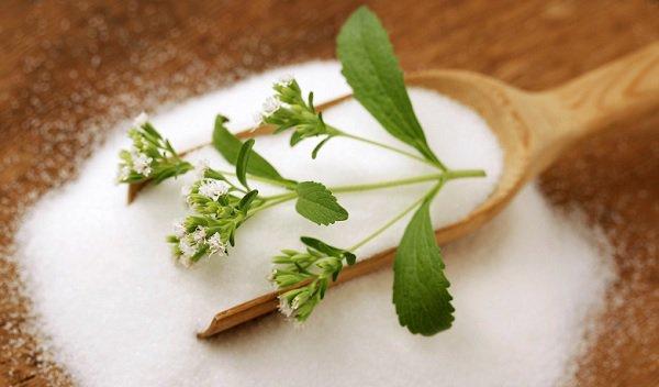 ¿Xilitol o Stevia?