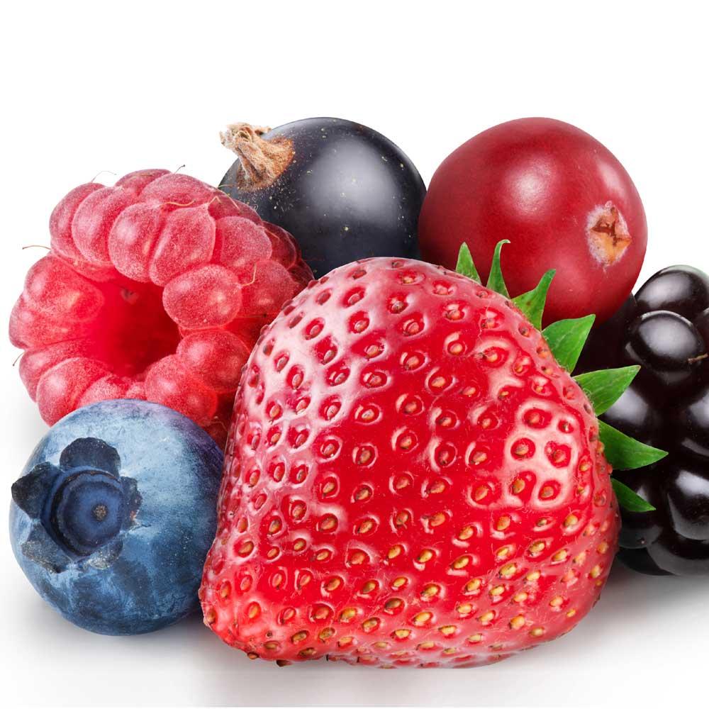 fruitos-del-bosque2