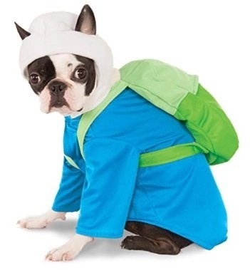 Finn Dog Costume