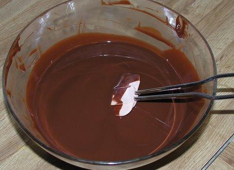 Smeltet sjokolade/delfiafett