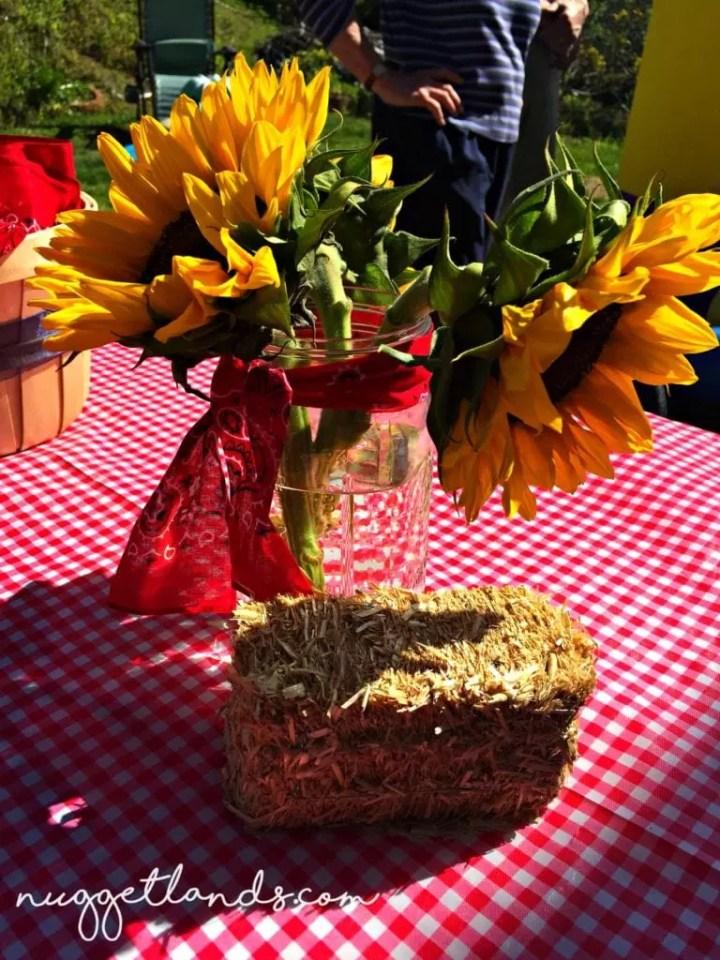 Cowgirl Birthday Centerpiece Outdoor