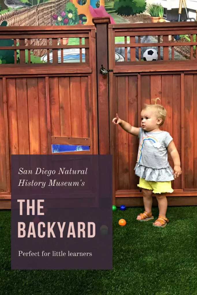 The Backyard at The Nat – Perfect Exhibit for Young Explorers