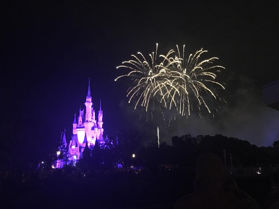 Walt Disney World Magic Kingdom Disney On A Budget - Wishes Desert Party