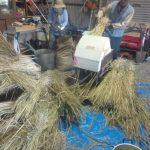 みんなで作った米の脱穀を楽しむ