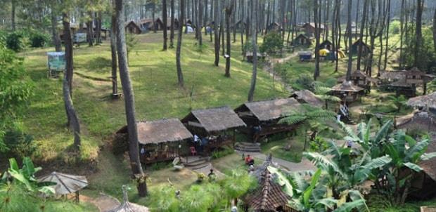 7 Tempat Wisata di Lembang yang Wajib Dikunjungi - Taman Hutan Jayagiri Lembang