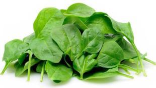 Sayur Bening Bayam Oyong Labu sebagai Resep Sayur Bayam - sayur bayam