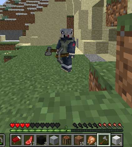 skin-minecraft-pc-gratis