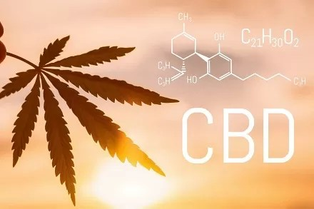 The History of CBD: A Brief Overview