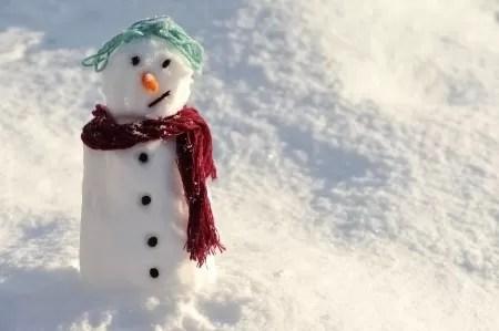 snow man photo