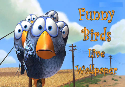 Funny Birds Live Wallpaper Android Free Download
