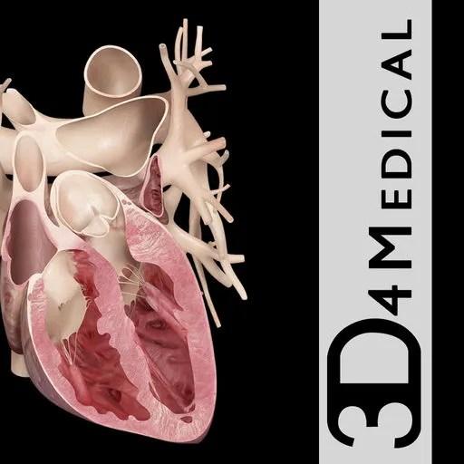 Heart Pro III Ipa App iOS Free Download