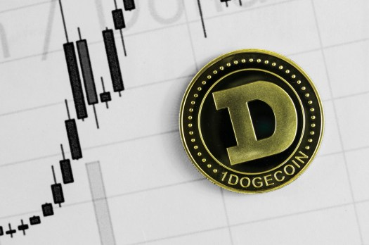 Dogecoin Price Could Double in Value Based on Market ...