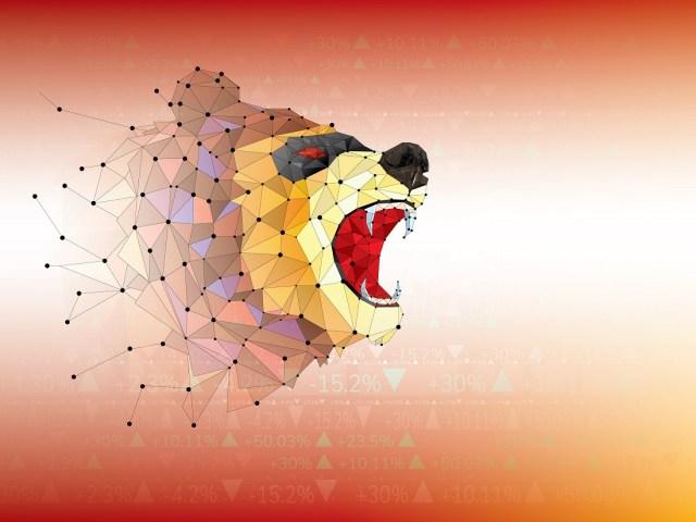 bear market bitcoin