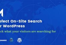 Mofect v1.0.0 - On-Site Search For WordPress 11
