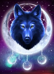 Galaxy Wolf Animals Paint By Number Numeral Paint