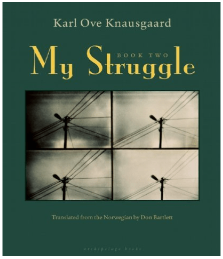 Books about life struggles essay