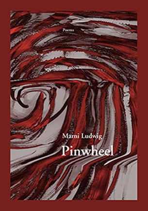 pinwheel book cover image