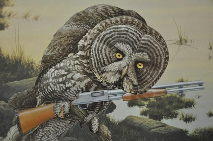 7-Who Me- Pornithology series
