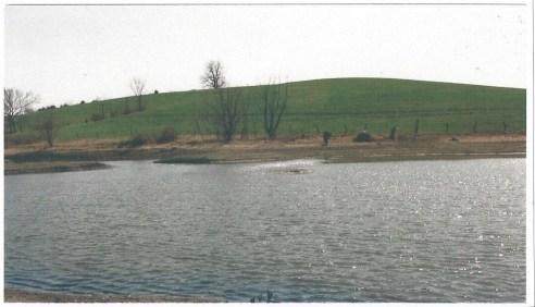 Low pond on my father's farm