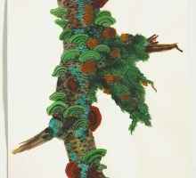 The Singular Elegance of Trees | Paintings --- Katie DeGroot