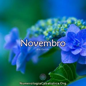 novembro-2018