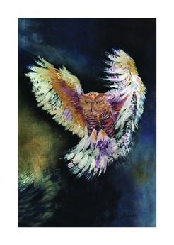 Owl print by Greer Jonas