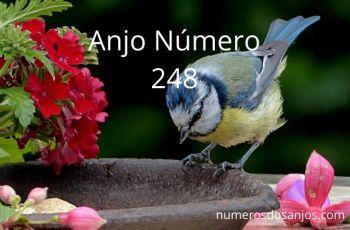 Anjo Número 248 – Significado do anjo número 248