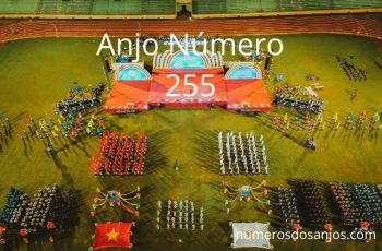 Anjo Número 255 – Significado do anjo número 255