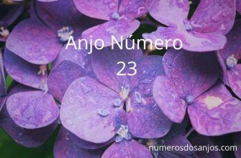 Significado do anjo número 23 – Sonhos se tornando realidade