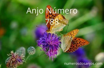 Anjo Número 788 – Significado do anjo número 788