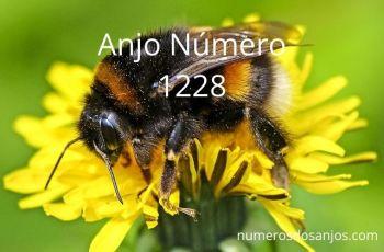 Anjo Número 1228 – Significado do anjo número 1228