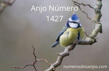 Anjo Número 1427 – Significado do anjo número 1427