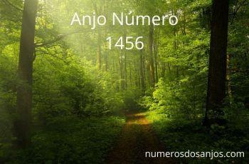 Anjo Número 1456 – Significado do anjo número 1456