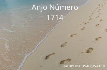 Anjo Número 1714: Momento Certo