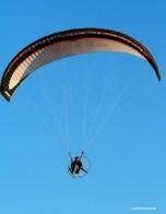 gliders-03