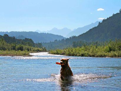 Frasier River