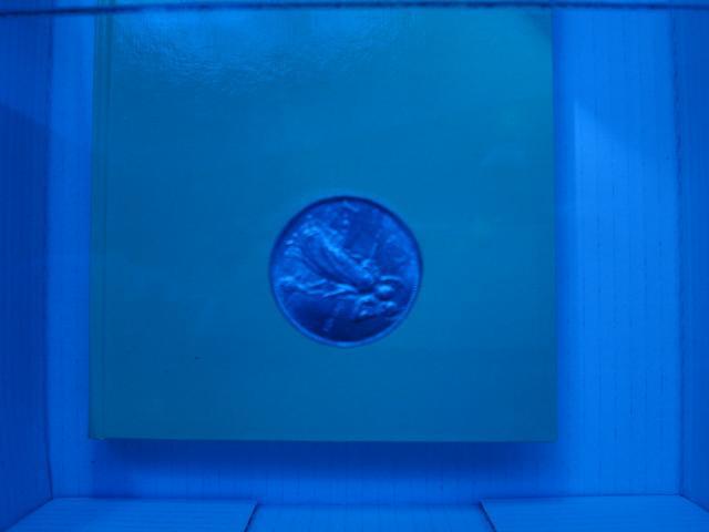 Figura 4.1: ecco il risultato che otterremo se non calibreremo le impostazioni del bianco. La fotocamera interpreterà in modo errato la temperatura del colore della luce che ci circonda, restituendo una foto dalla tonalità completamente errata. In questo caso la foto ha una tonalità fredda (blu).