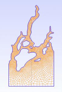 gmsh_grid