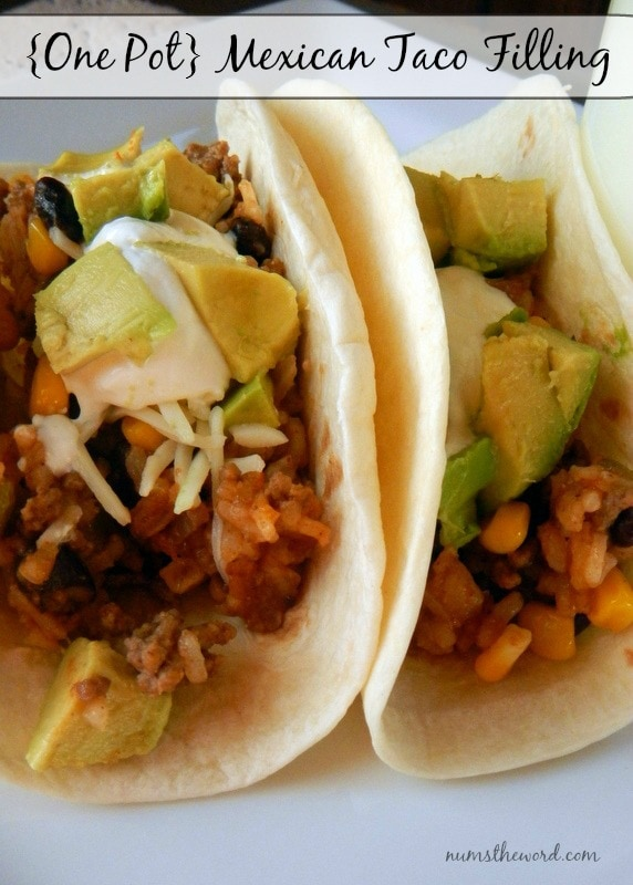 One Pot Mexican Taco Filling