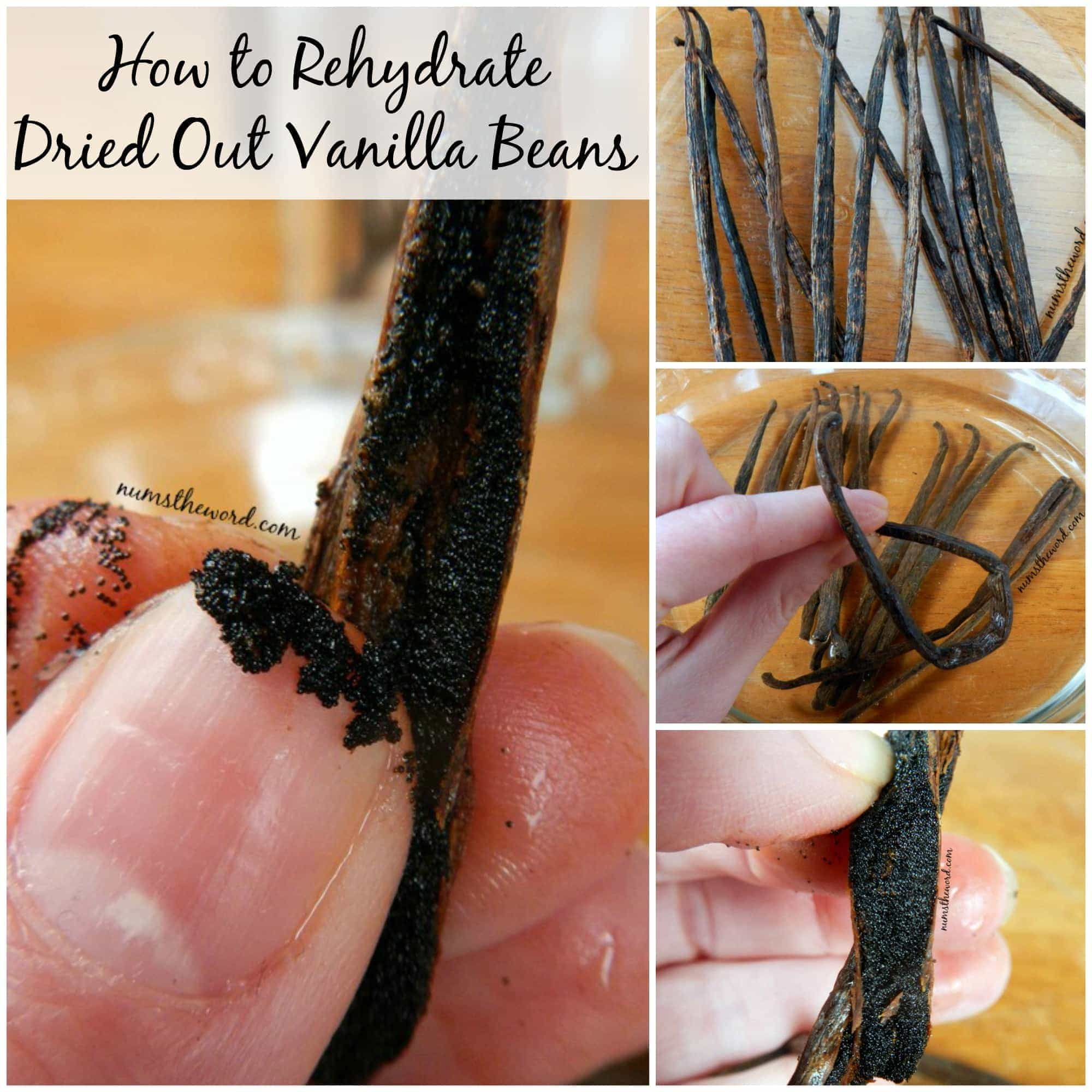 How to Rehydrate Dried Out Vanilla Beans
