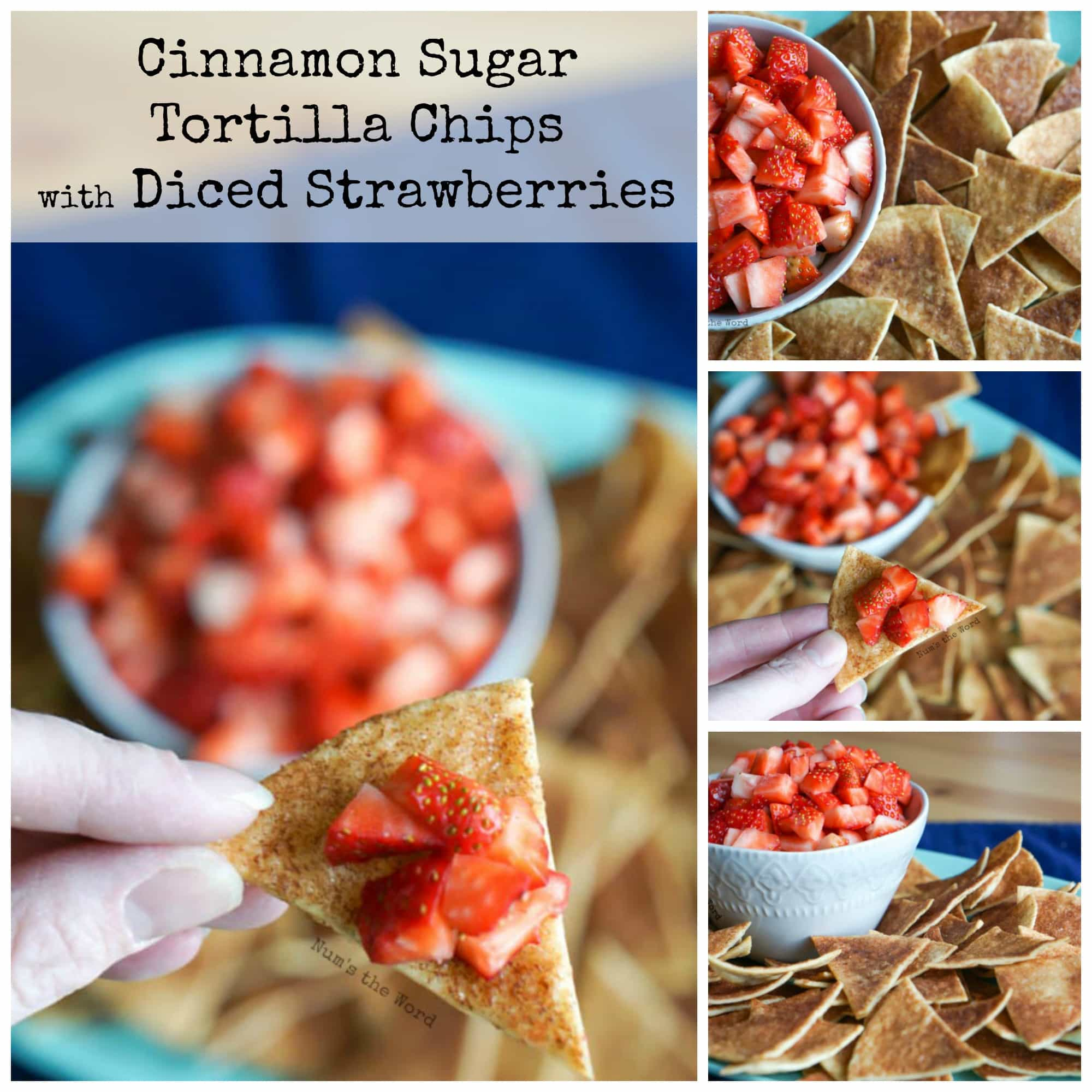 Cinnamon Sugar Tortilla Chips With Diced Strawberries